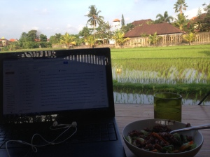 Working from Indonesia has it's perks !